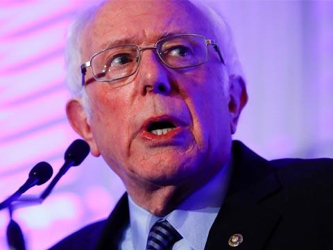 Bernie Sanders pink purple